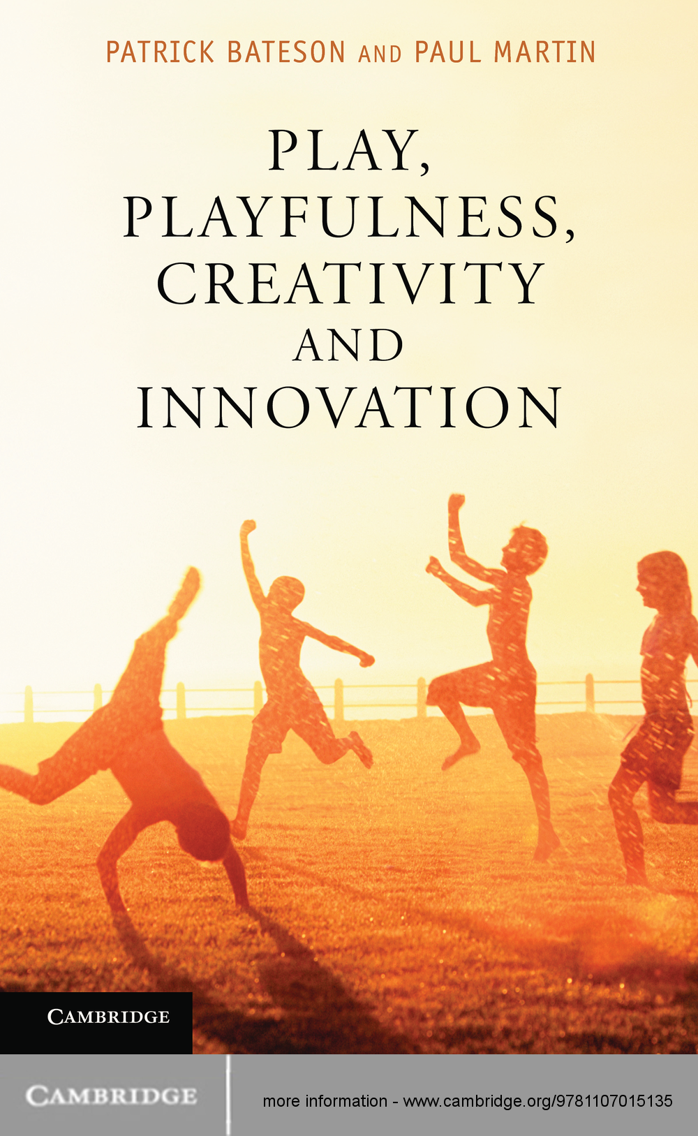 Play,  Playfulness,  Creativity and Innovation