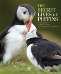 The Secret Lives Of Puffins: