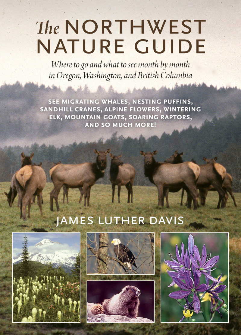 The Northwest Nature Guide By: James Luther Davis