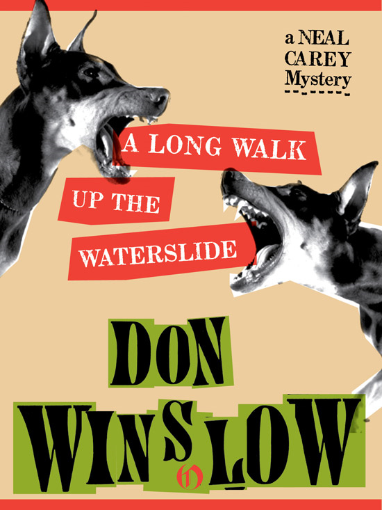 A Long Walk Up the Waterslide By: Don Winslow