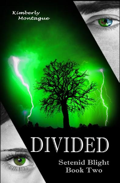 Divided: Setenid Blight Book Two