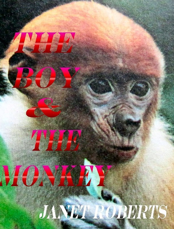 The Boy & The Monkey By: Janet Roberts