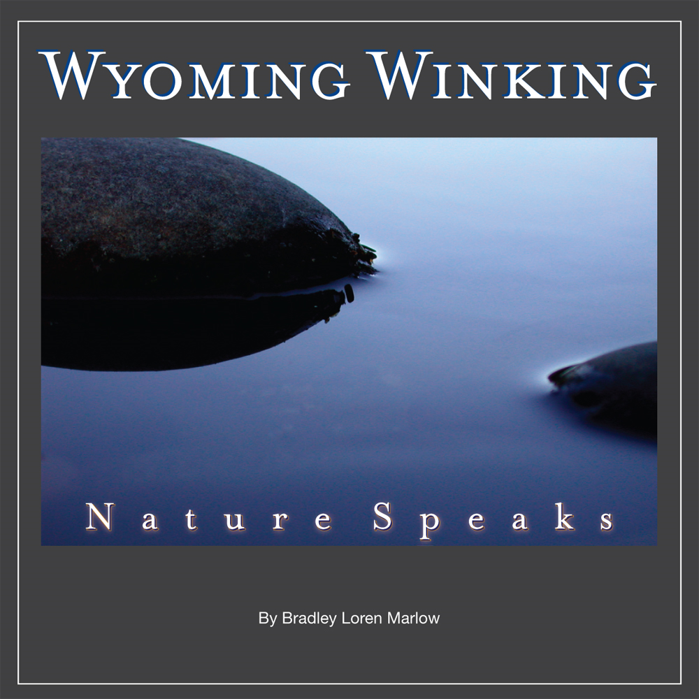 Wyoming Winking