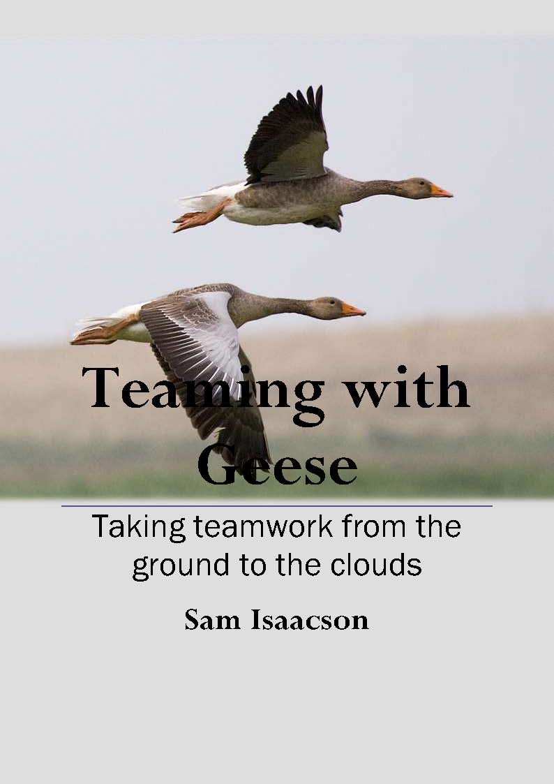 Teaming with Geese