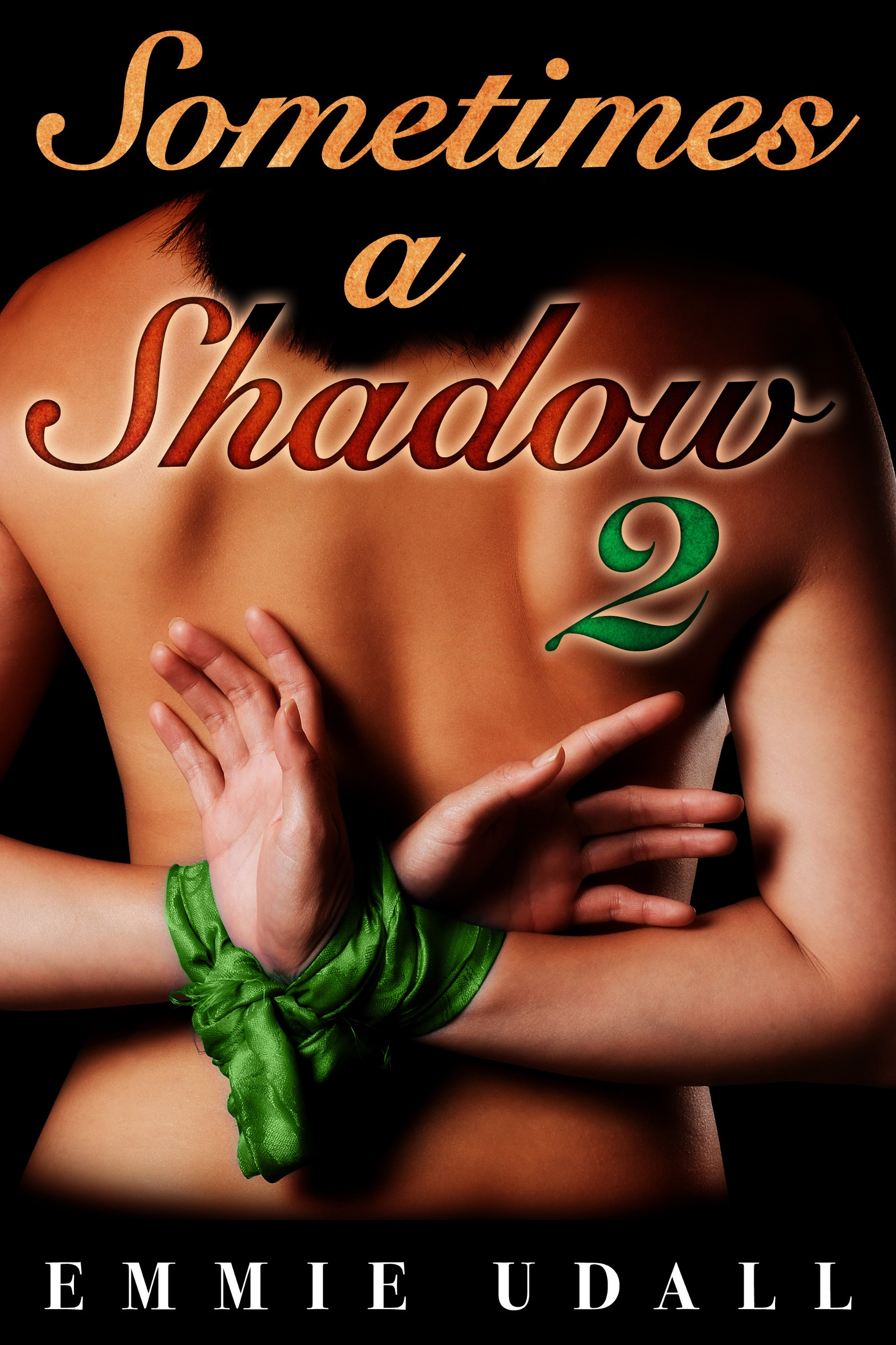 Michelle Fawkes  Emmie Udall - Sometimes a Shadow 2 - The Slave Auction