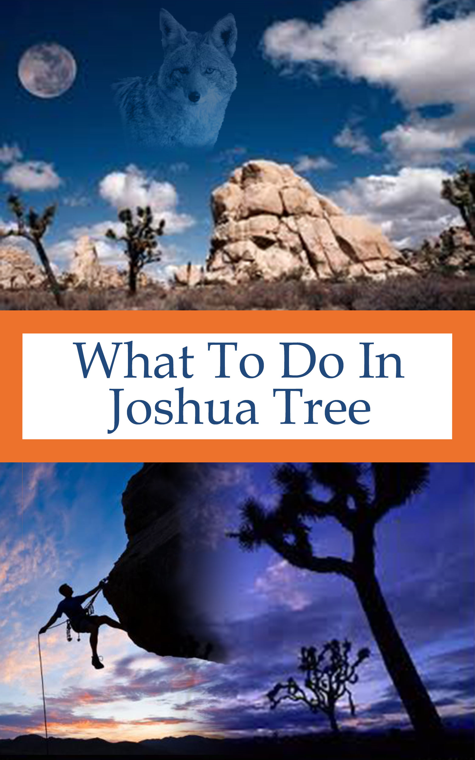 What To Do In Joshua Tree