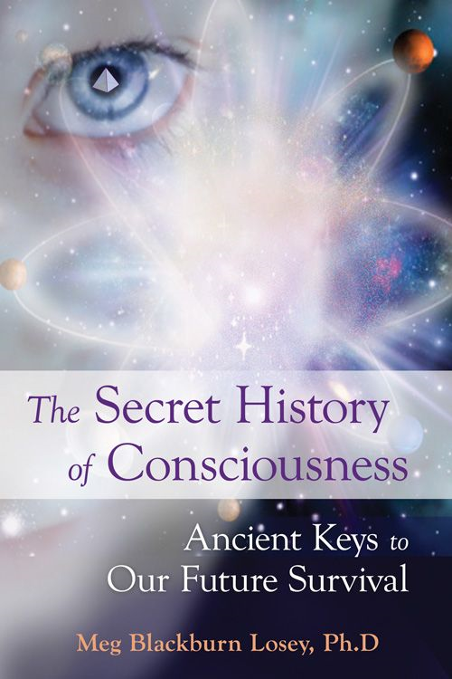 The Secret History of Consciousness By: Blackburn Losey, Meg