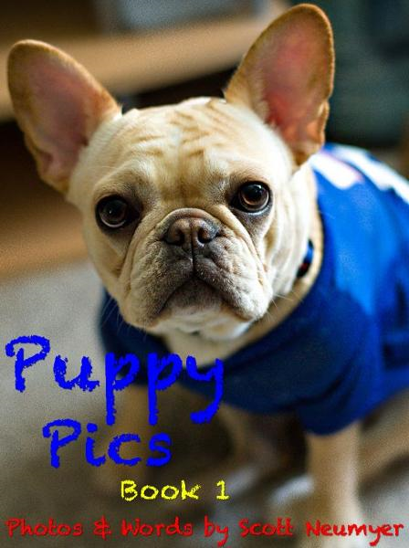 Puppy Pics: Book 1 By: Scott Neumyer