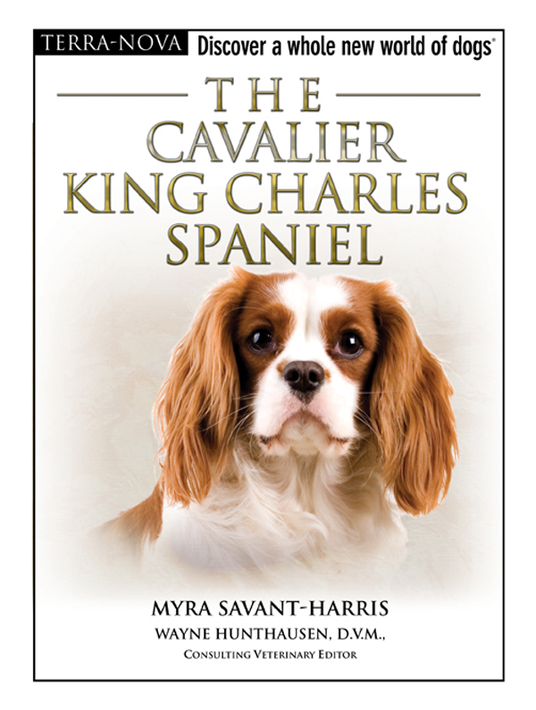 The Cavalier King Charles Spaniel By: Myra Savant-Harris