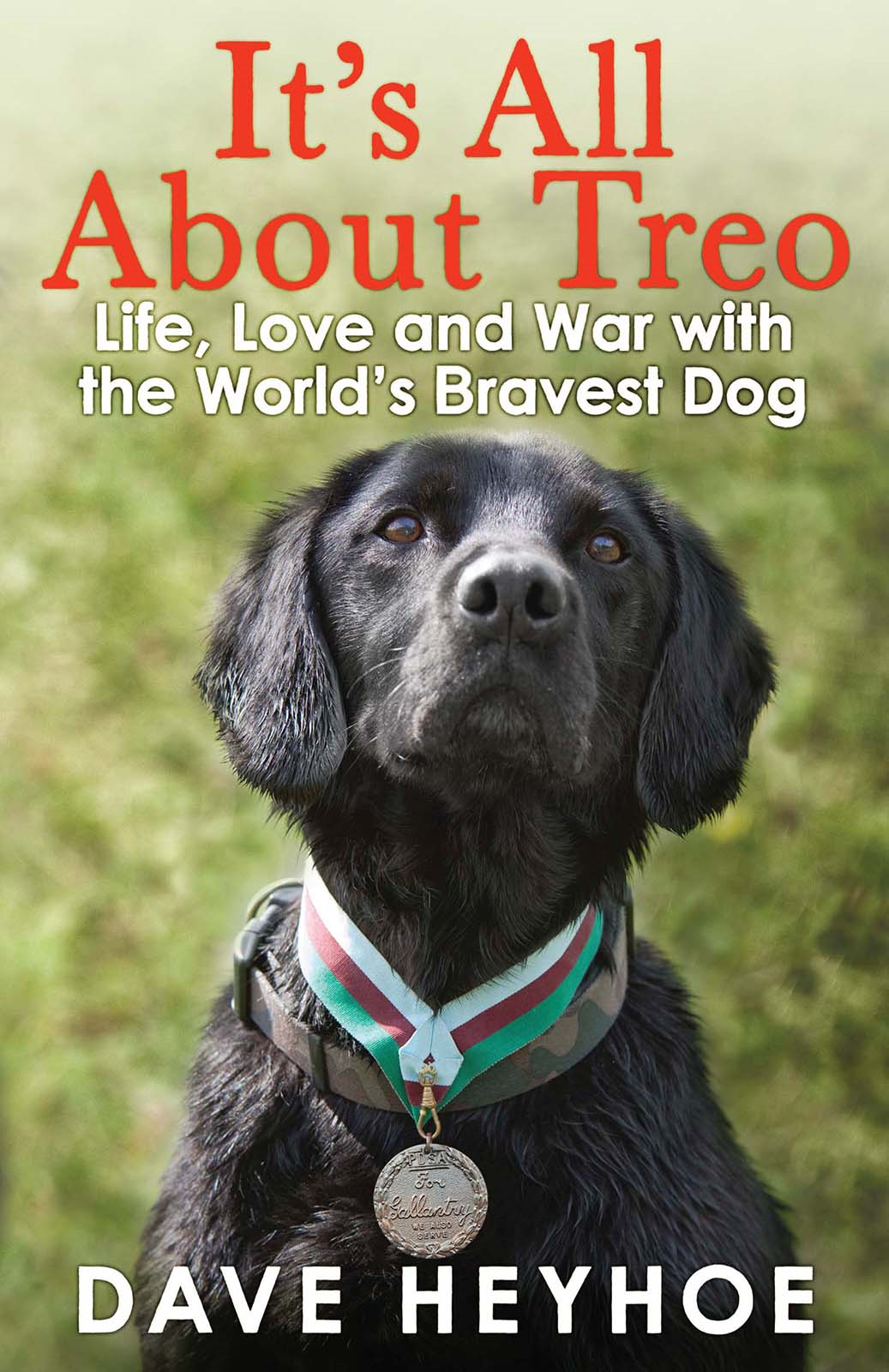 It's All About Treo: Life and War with the World's Bravest Dog Life and War with the World's Bravest Dog