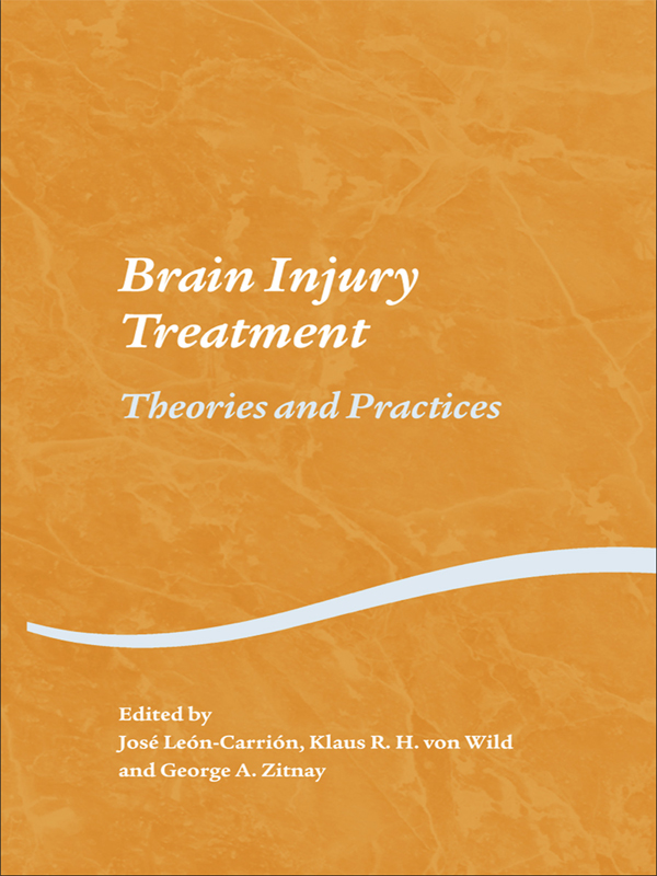 Brain Injury Treatment Theories and Practices