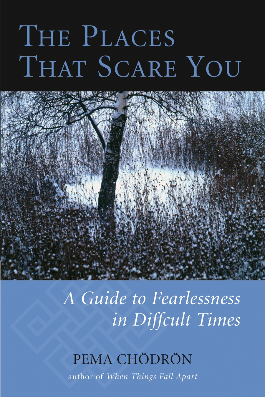 The Places That Scare You By: Pema Chodron