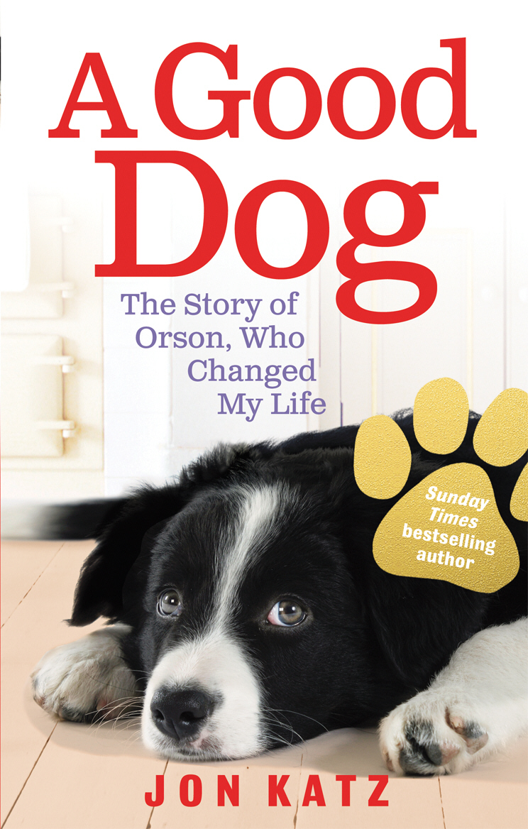 A Good Dog The Story of Orson,  Who Changed My Life