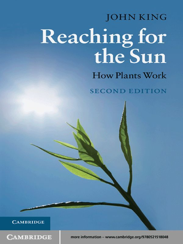 Reaching for the Sun How Plants Work
