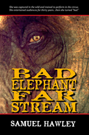 Bad Elephant Far Stream: A Novel