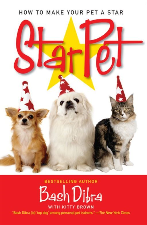 StarPet How to Make Your Pet a Star