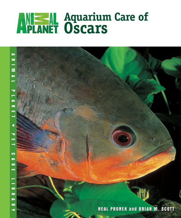 Aquarium Care of Oscars By: Brian M. Scott,Neal Pronek