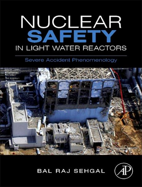 Nuclear Safety in Light Water Reactors Severe Accident Phenomenology