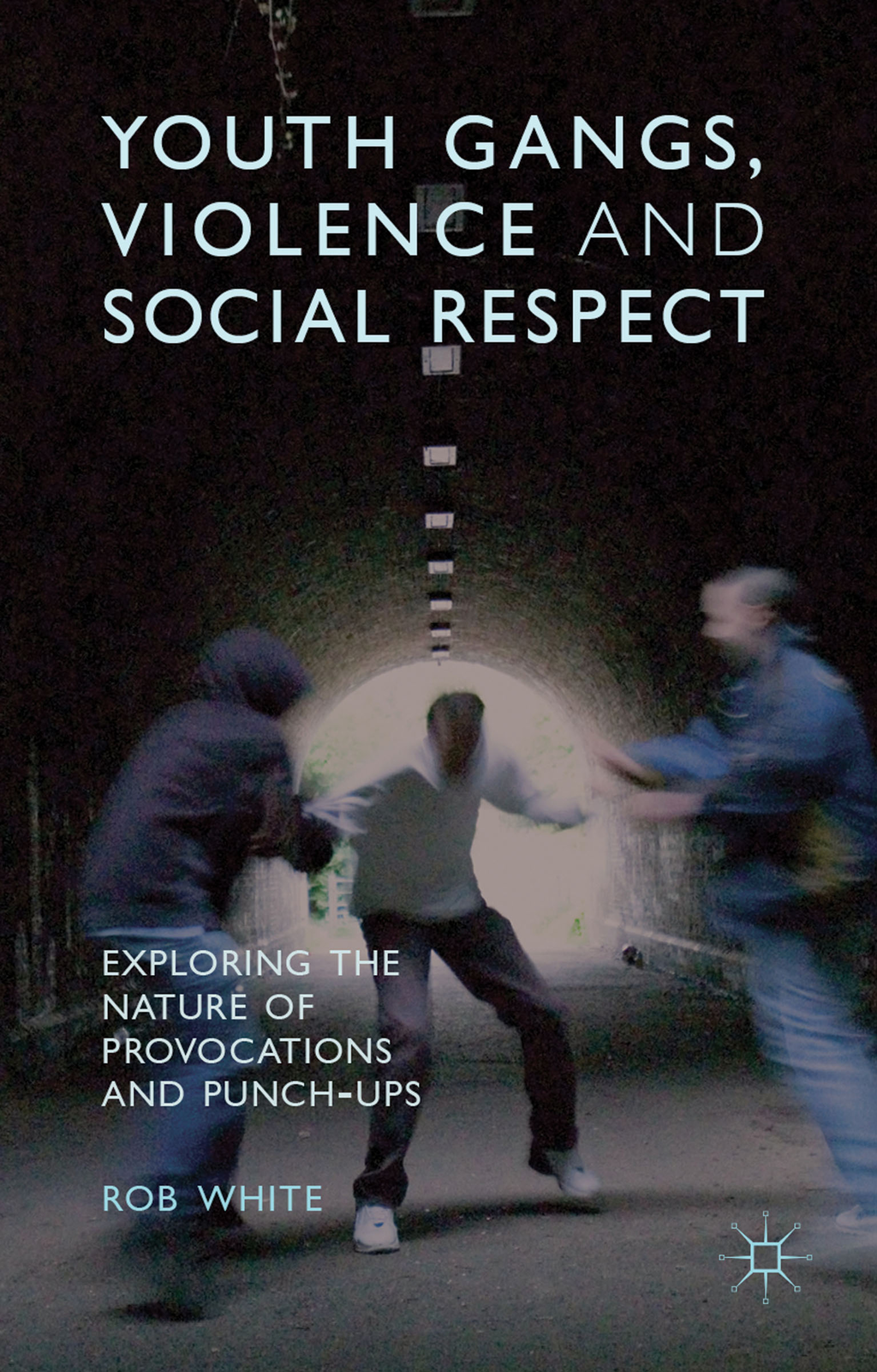 Youth Gangs,  Violence and Social Respect Exploring the Nature of Provocations and Punch-Ups