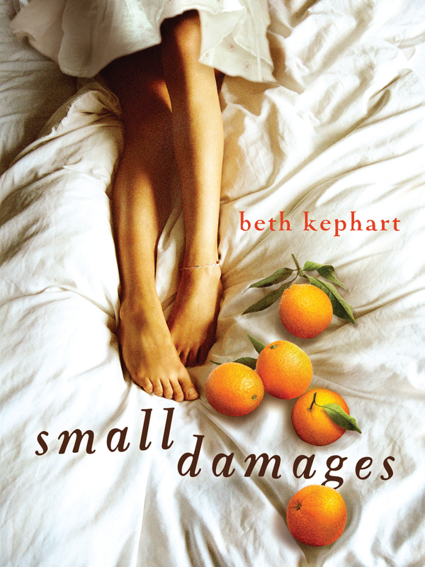 Small Damages By: Beth Kephart