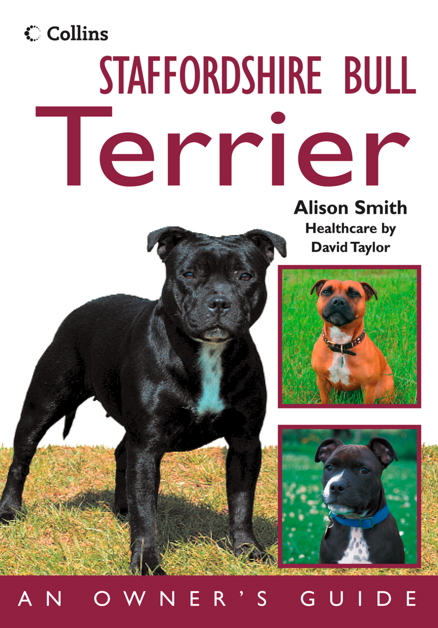 Staffordshire Bull Terrier: An Owner?s Guide
