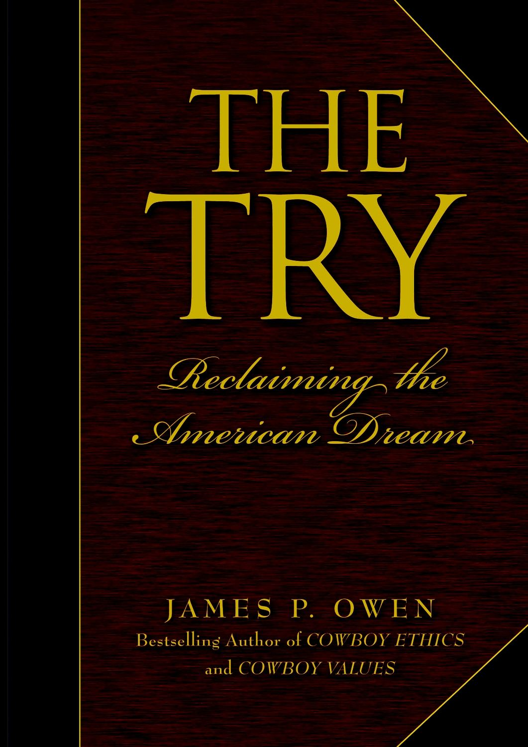 The Try: Reclaiming the American Dream By: James P. Owen