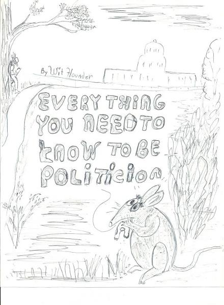 Everything You Need to Know to be a Politician By: Wit Flounder
