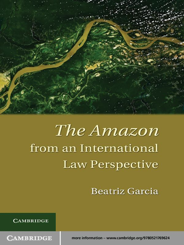 The Amazon from an International Law Perspective
