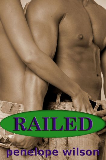 Railed (Gay Erotica)