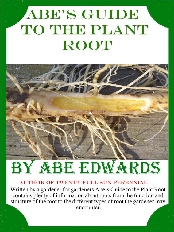 Abe's Guide to the Plant Root