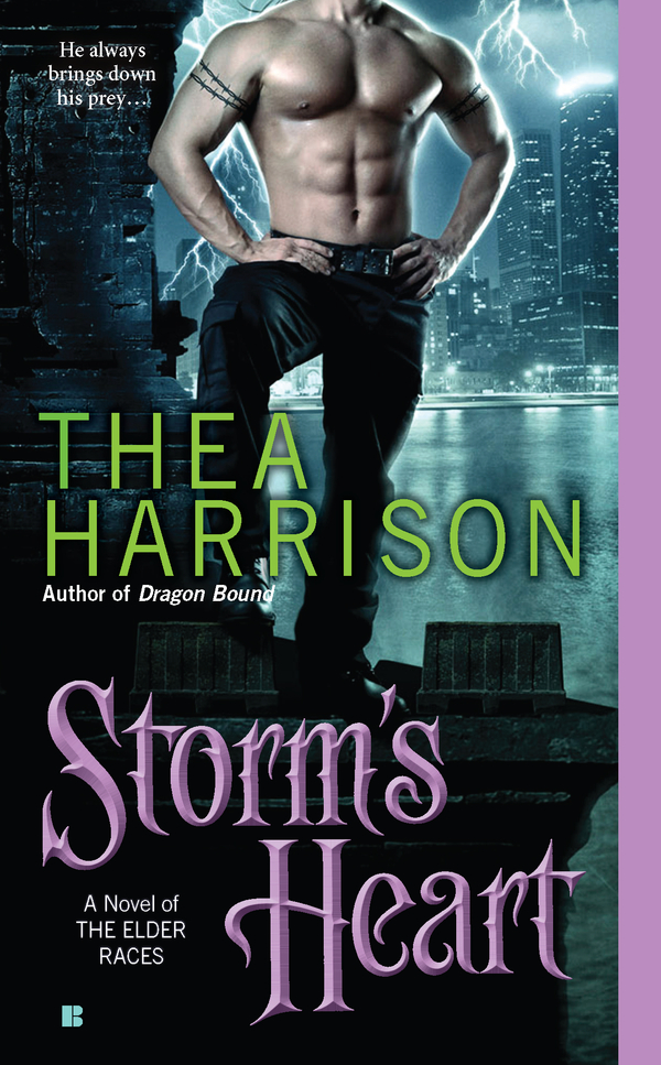 Storm's Heart By: Thea Harrison