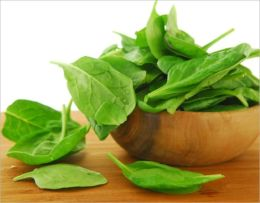 A Crash Course on How to Grow Spinach