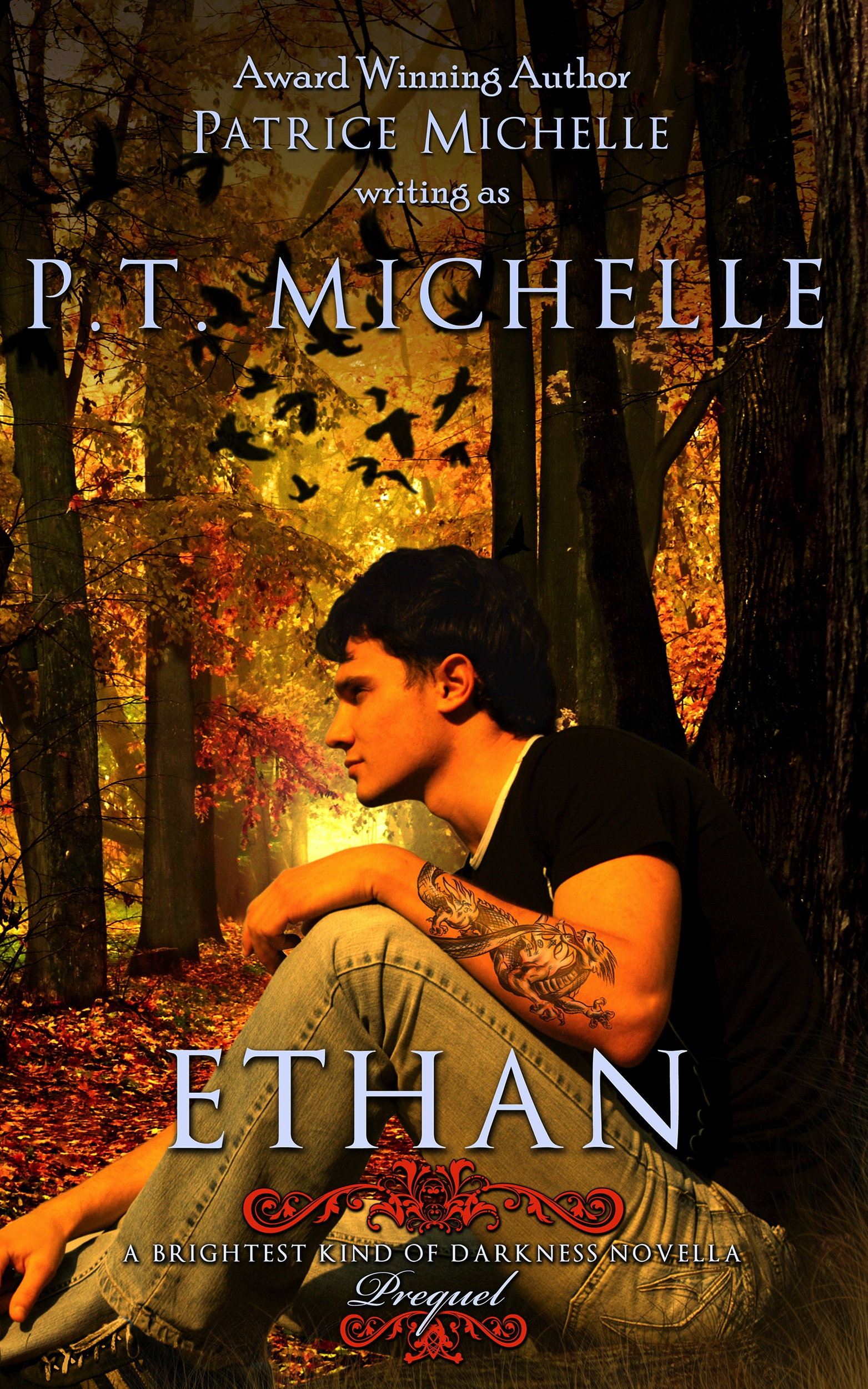 Ethan (Brightest Kind of Darkness, Novella 0.5)