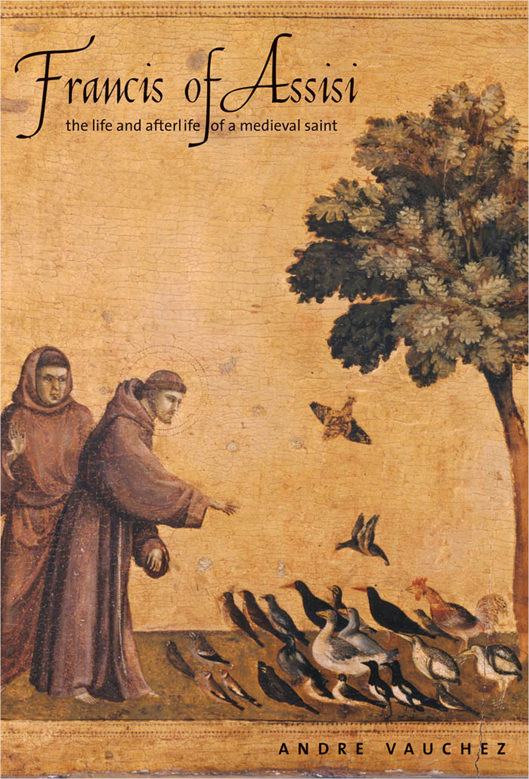 Francis of Assisi: The Life and Afterlife of a Medieval Saint By: Andre Vauchez