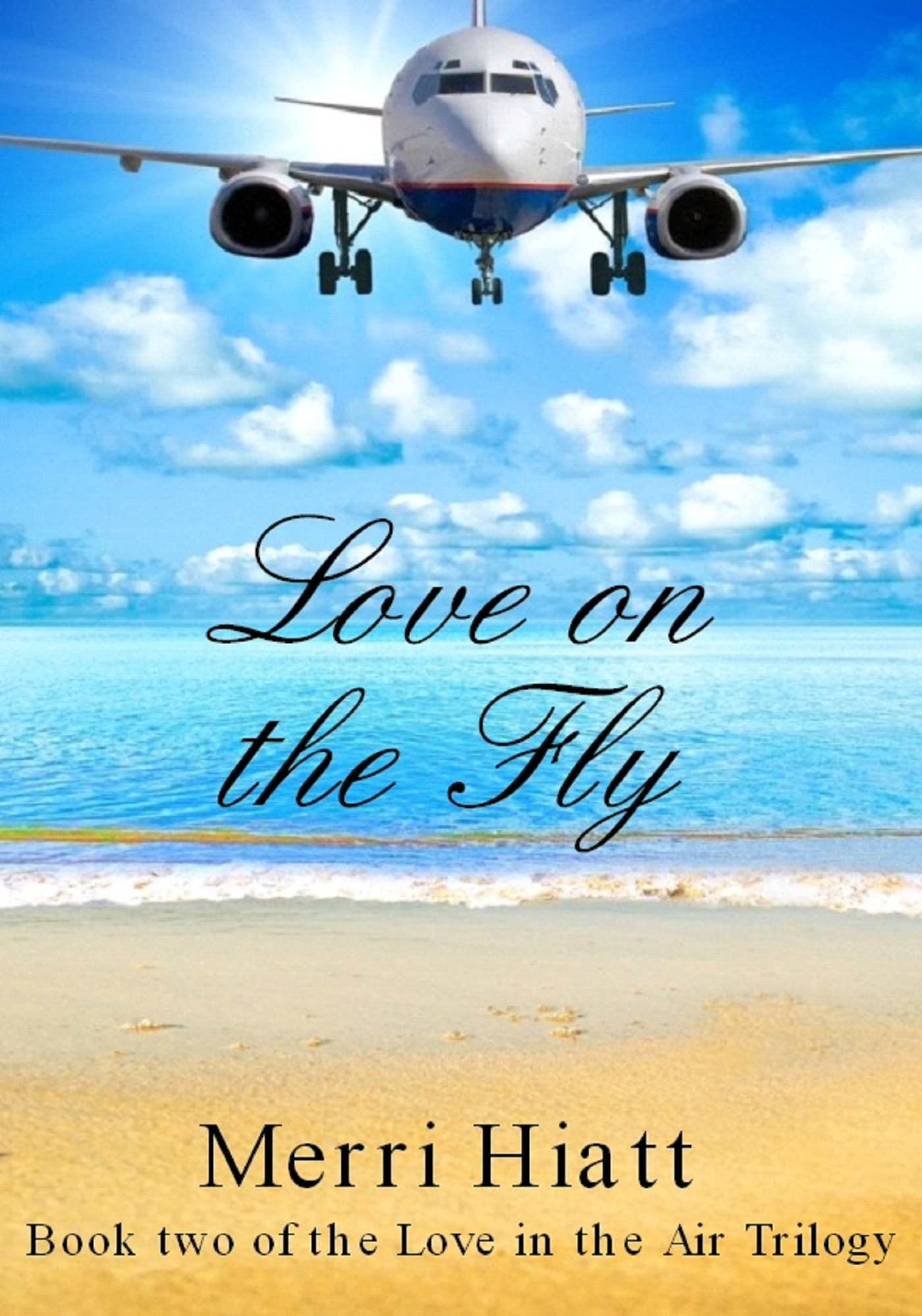 Love on the Fly (Book two of the Love in the Air Trilogy)