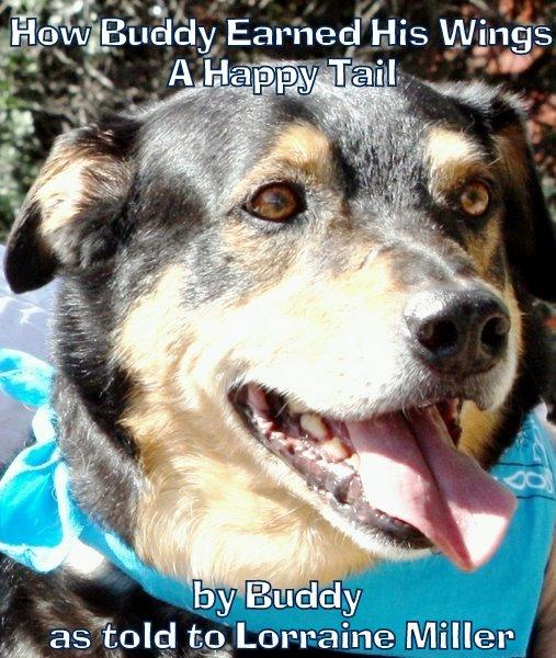 How Buddy Earned His Wings—A Happy Tail