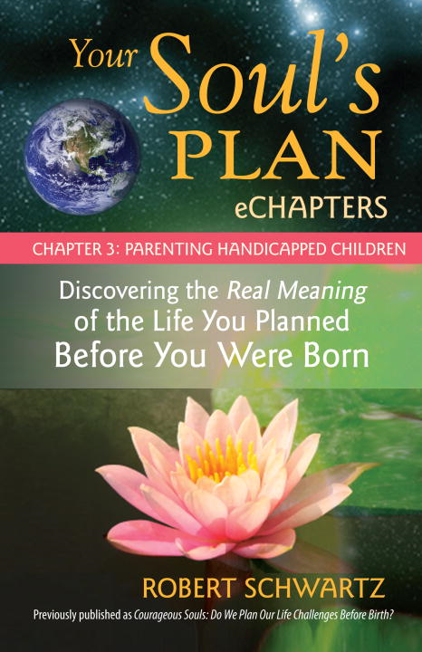 Your Soul's Plan eChapters - Chapter 3: Parenting Handicapped Children Discovering the Real Meaning of the Life You Planned Before You Were Born