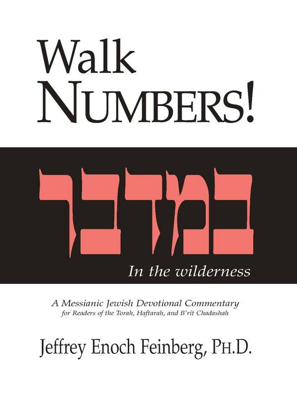 Walk Numbers: In The Wilderness By: Jeffrey Enoch Feinberg  Ph.D.