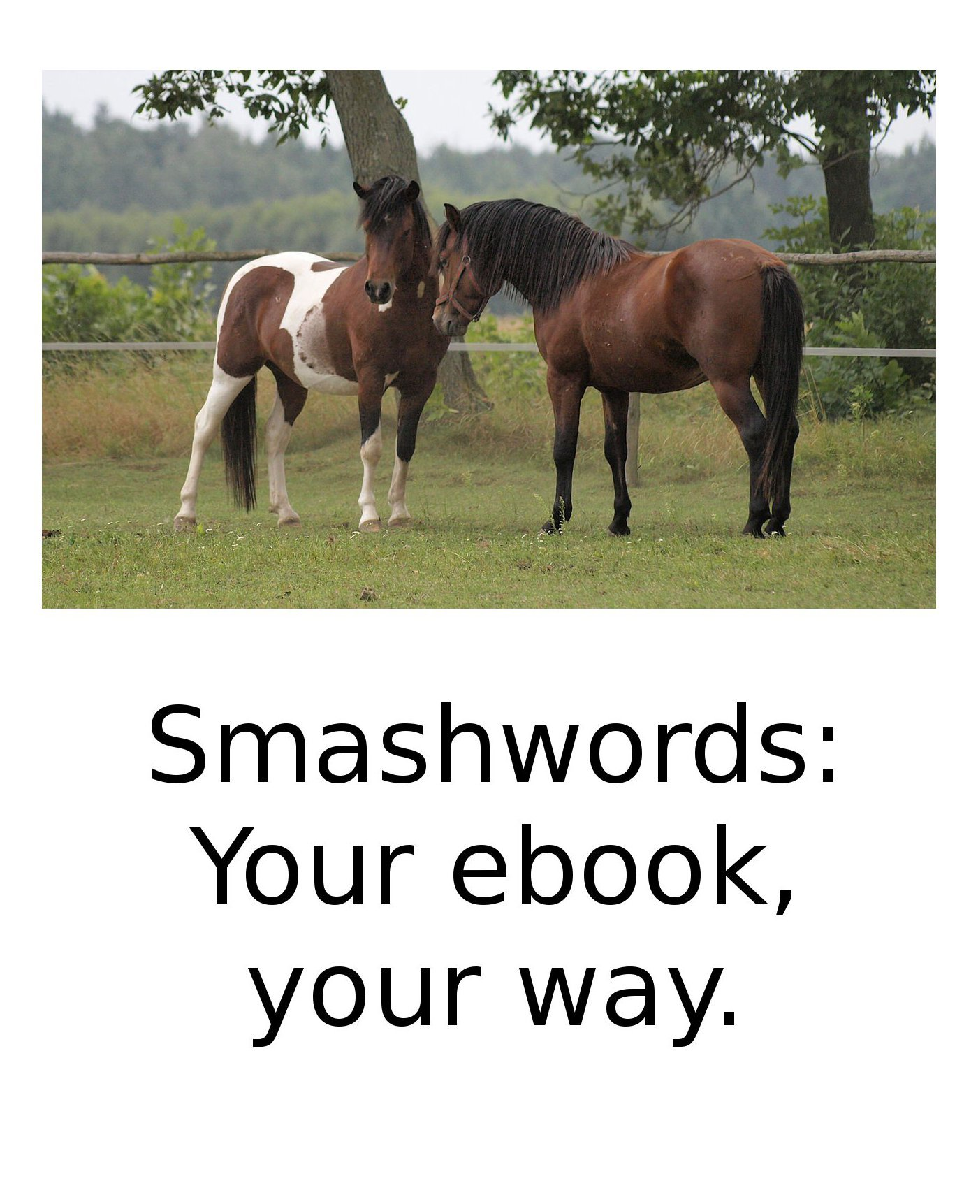 ❦ Smashwords Test Book