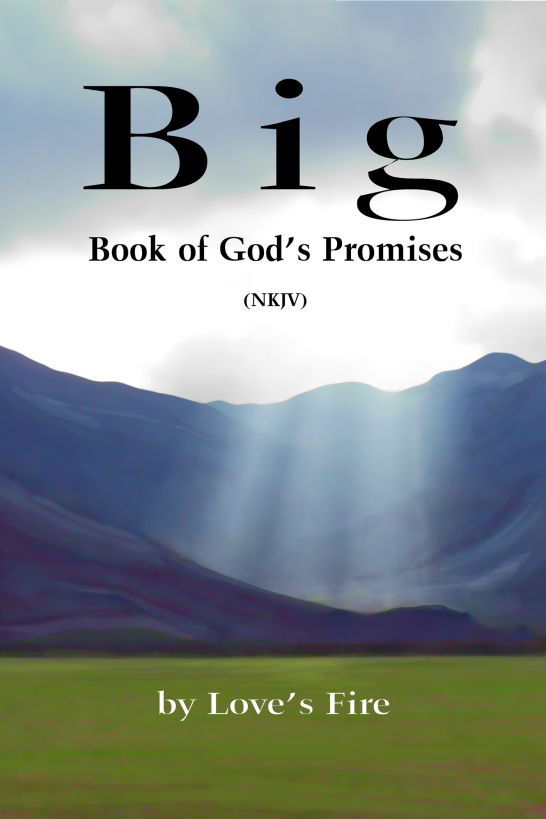 Big Book of God's Promises