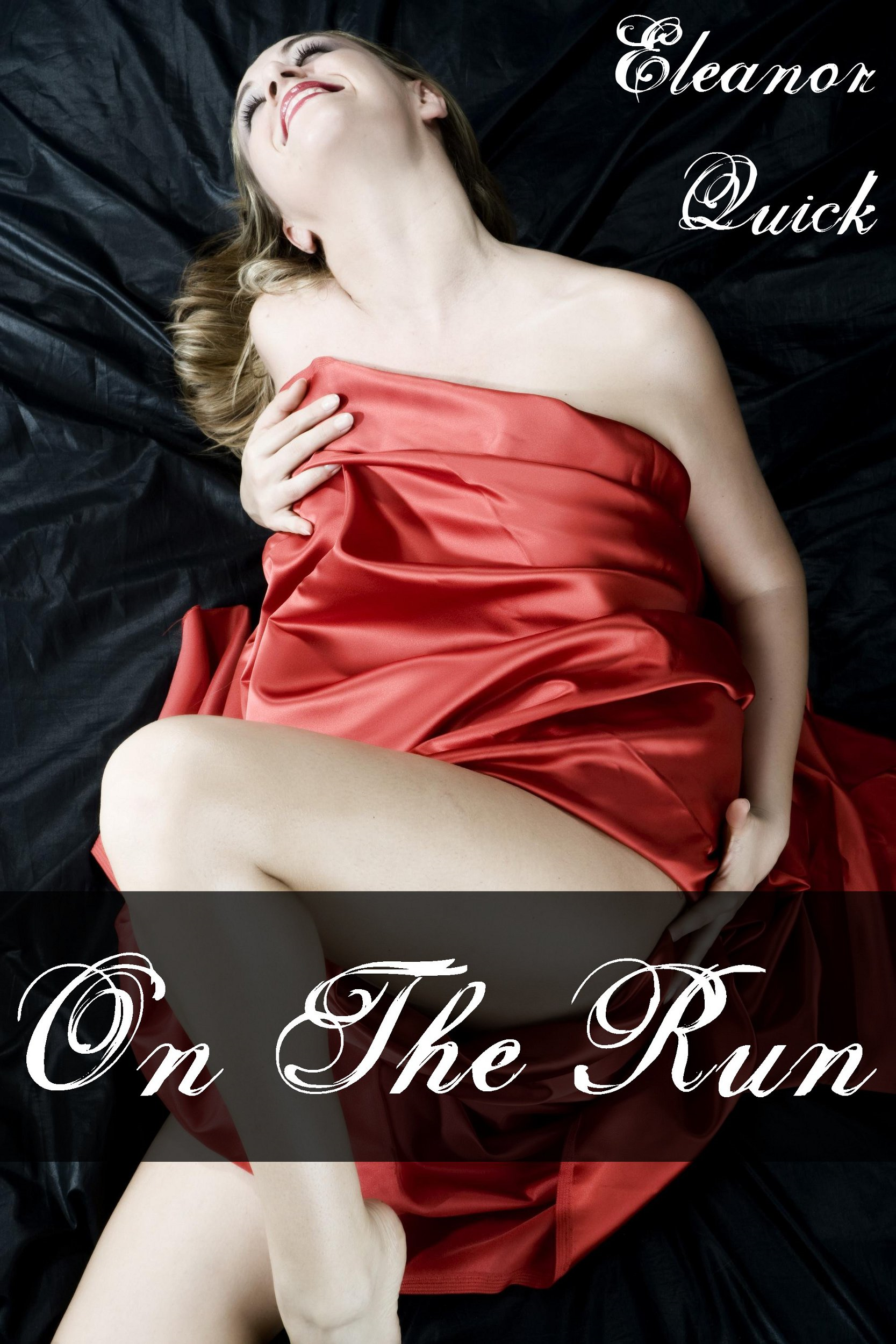 On The Run (Gangbang Erotica)