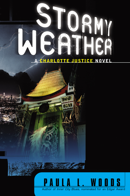 Stormy Weather: A Charlotte Justice Novel (Charlotte Justice Novels)