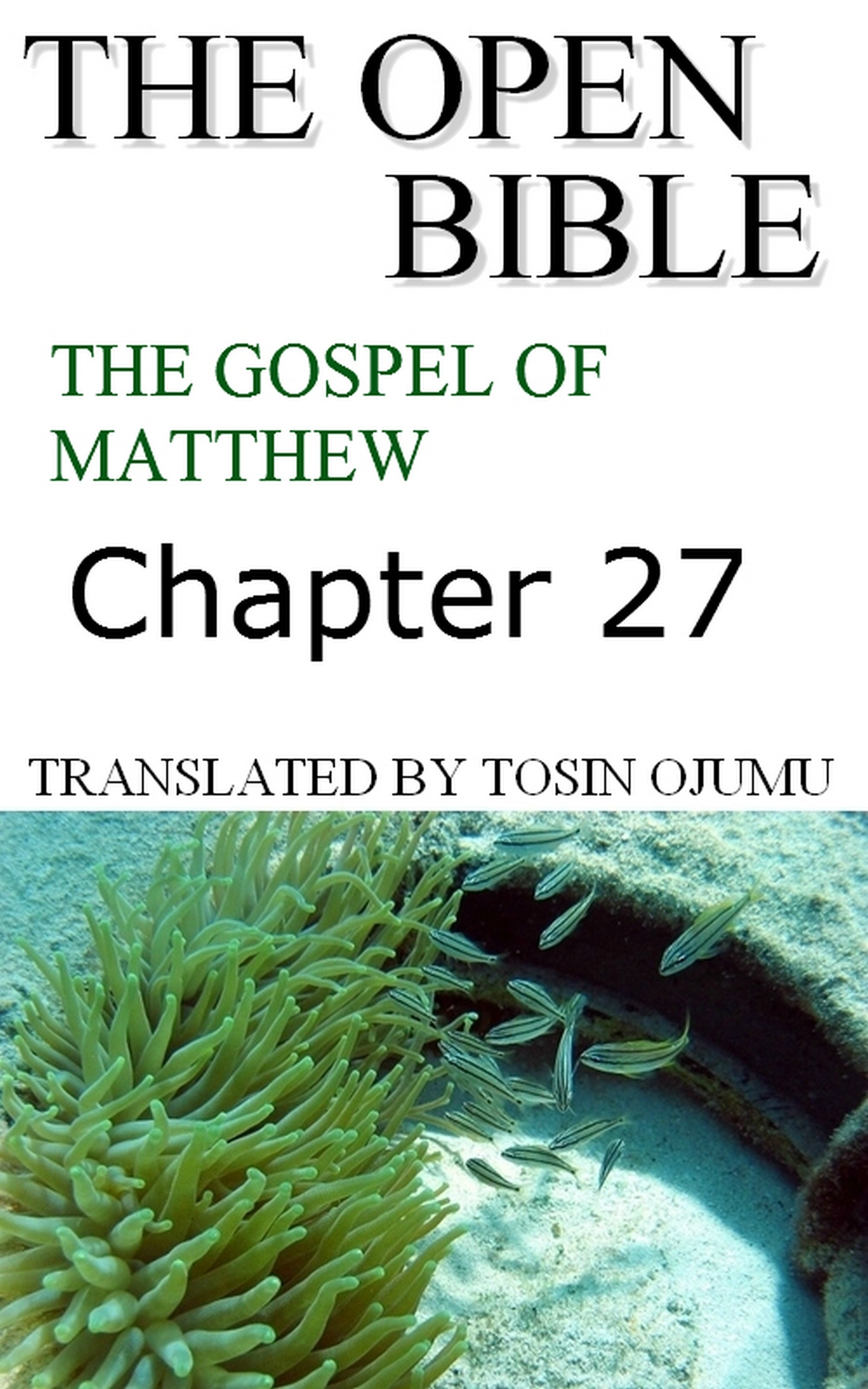 The Open Bible: The Gospel of Matthew: Chapter 27