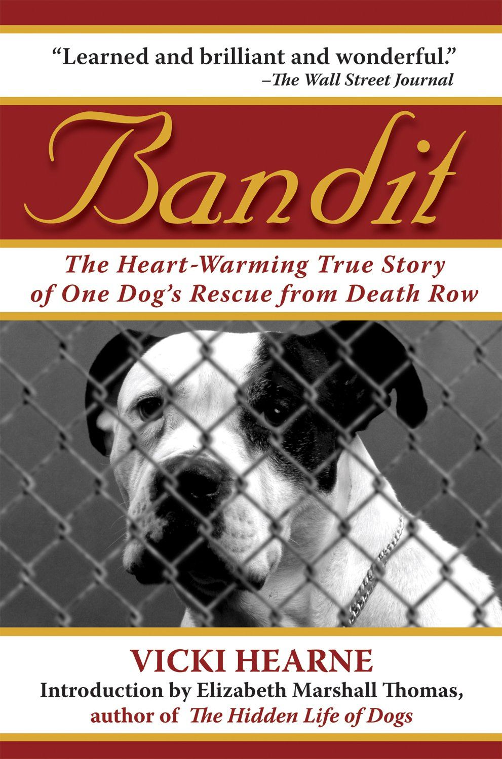 Bandit: By: Vicki Hearne