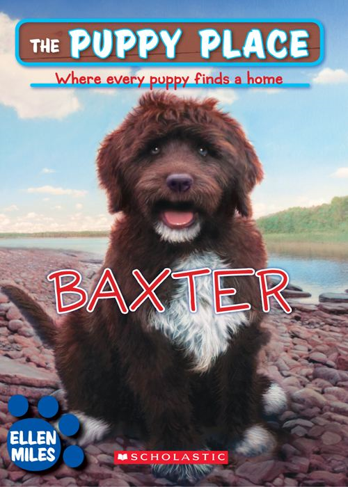 The Puppy Place #19: Baxter By: Ellen Miles,Tim O'Brien