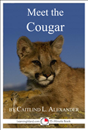Meet The Cougar: A 15-Minute Book For Early Readers