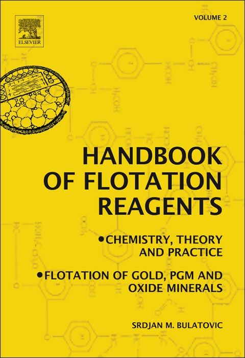 Handbook of Flotation Reagents: Chemistry,  Theory and Practice Volume 2: Flotation of Gold,  PGM and Oxide Minerals