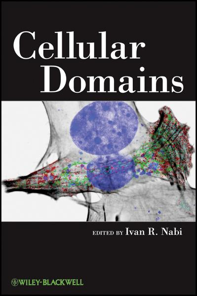 Cellular Domains By: Ivan R. Nabi