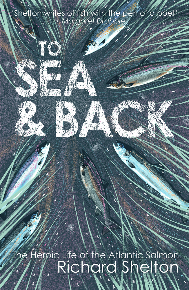 To Sea & Back: The Heroic Life of the Atlantic Salmon