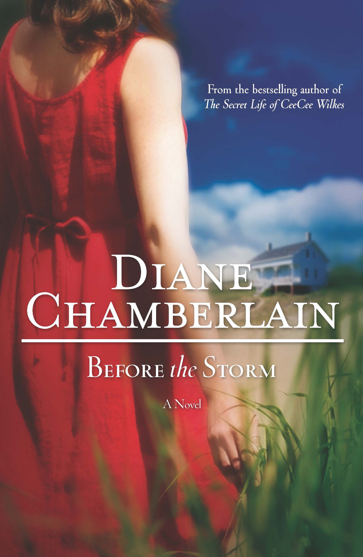 Before the Storm By: Diane Chamberlain